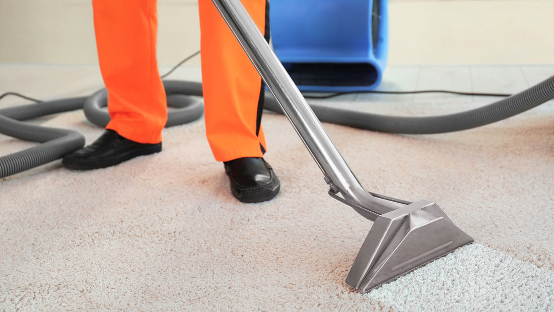 Local rug cleaners in burpengary